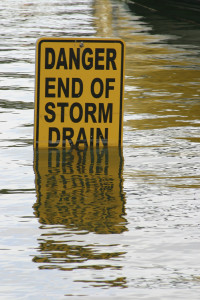 OBT on flood recovery for businesses