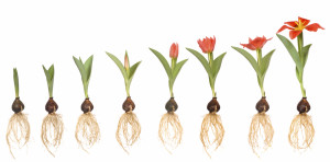 Is your business positioned to grow?