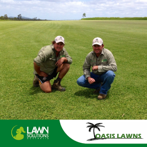 OBT feature business – Oasis Lawns Turf Supplies