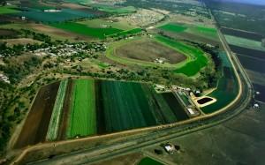 OBT Feature Business, Simon Farms