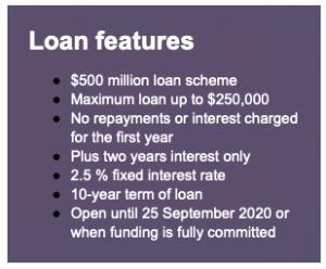QRIDA loan features